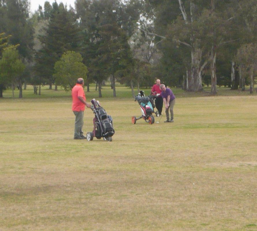 Golf: Torneo Abierto en Navarro