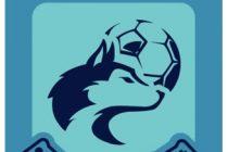 Liga Lobense: Ya está la Lista de los participantes del torneo de Fútbol Virtual