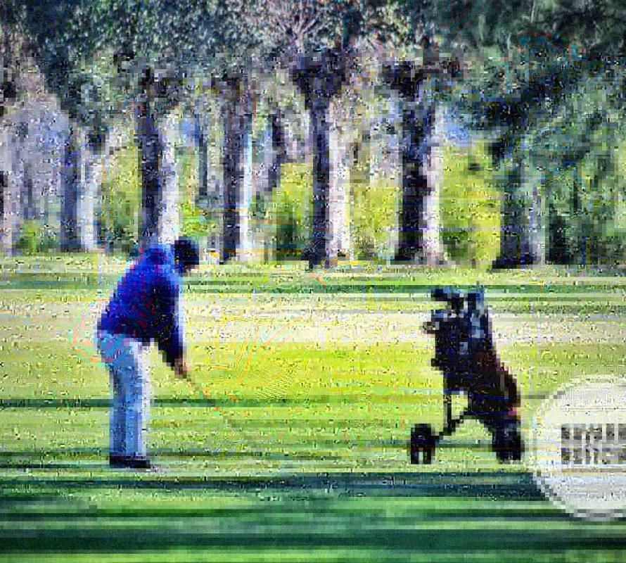 Lo golfistas siguen disfrutando del impecable campo de juego