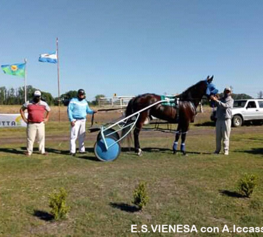 Destacados triunfos en trote en el Hipódromo de Chivilcoy
