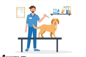 Cepla: Vacunación Antirrábica